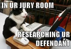 Jury Cat